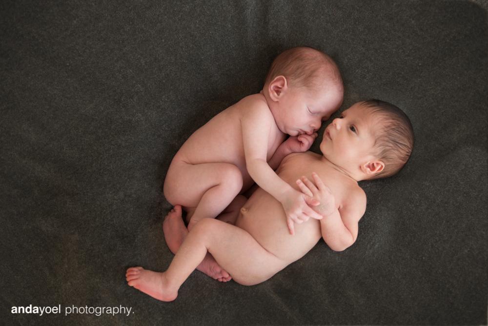 צילום תינוקות ניובורן תאומים - אנדה יואל