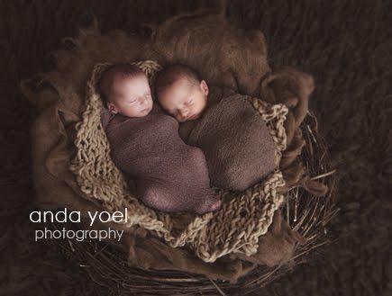 צילומי ניו בורן תאומים בנים בסטודיו - אנדה יואל
