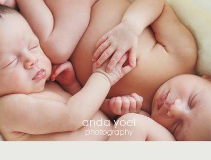תינוקות תאומות בנות שבוע מחזיקות ידיים בצילומי ניובורן תאומים בסטודיו - אנדה יואל