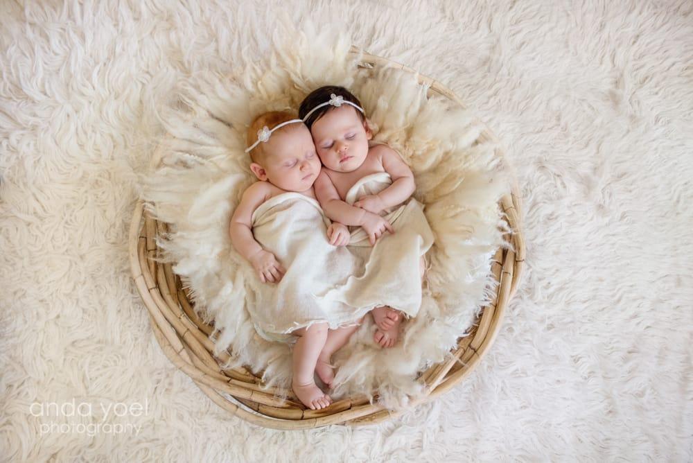 צילומי ניובורן תאומות בבית - מסדרת צילומי תאומים אנדה יואל