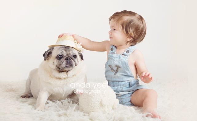 תינוק מתוק שם כובע לכלב שלו - מתוך סדרת צילומי תינוקות של אנדה יואל