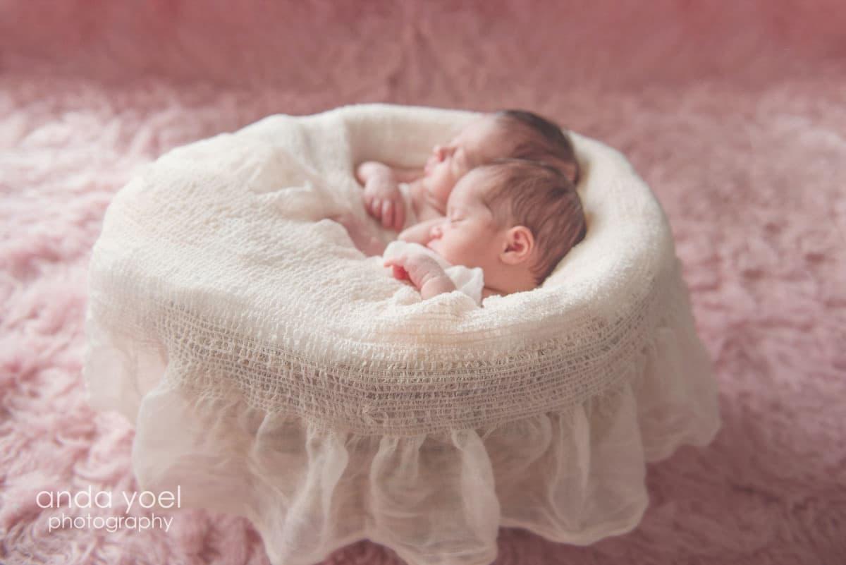 צילומי ניובורן תאומות בנות - אנדה יואל