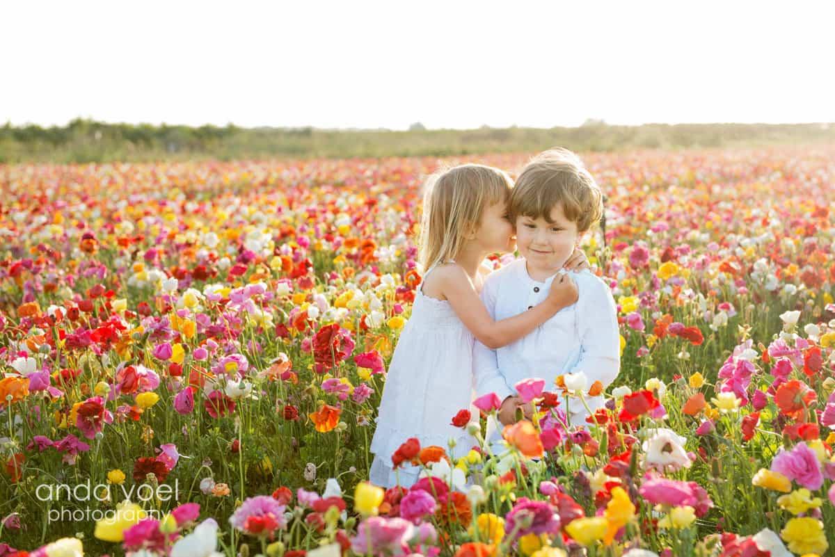 צילום ילדים בטבע בשדה פרחים