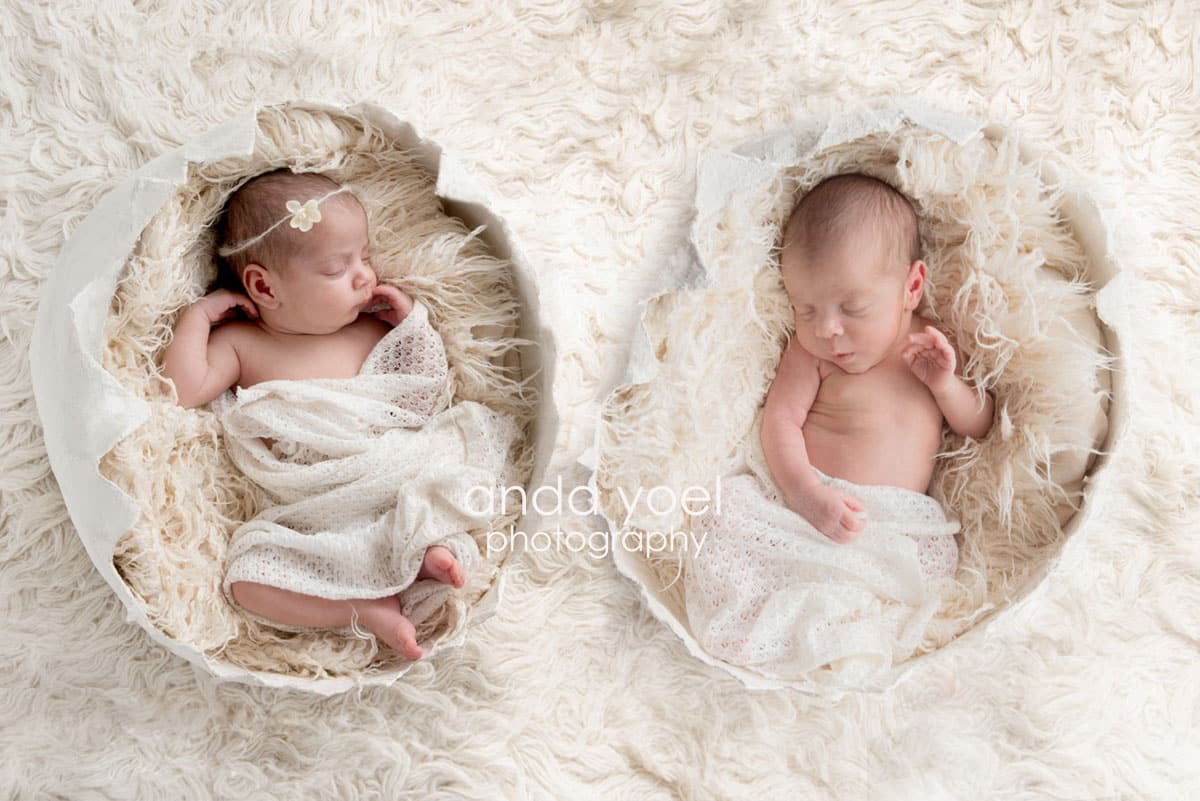 צילומי ניו בורן תאומים כל אחד בקליפת ביצה - מסדרת צילומי תאומים ניובורן באור טבעי - אנדה יואל