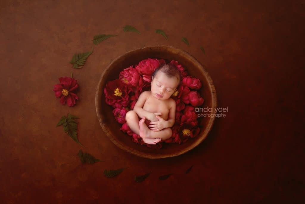 תינוקת בסלסלת עץ וורדים אדומים - צילומי ניובורן בסטודיו אנדה יואל