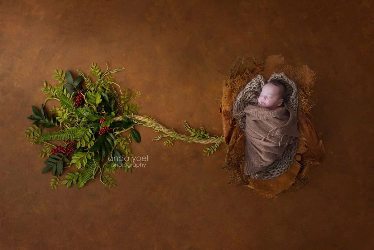 צילומי ניובורן בתוך קליפת עץ בעריכת פוטושופ מורכבת, אנדה יואל