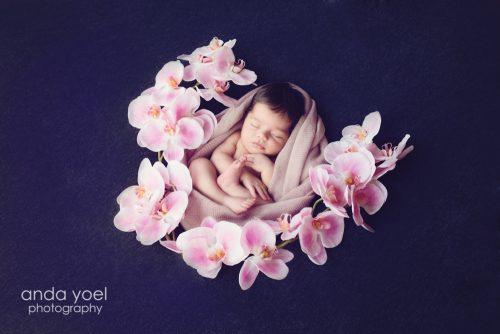 תינוקת בעיטוף ורוד בין פרחים ורודים - צילומי ניובורן בסטודיו אנדה יואל