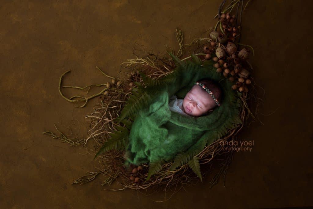 צילומי ניובורן בעל רקע צמחיה ירוקה בסטודיו אנדה יואל