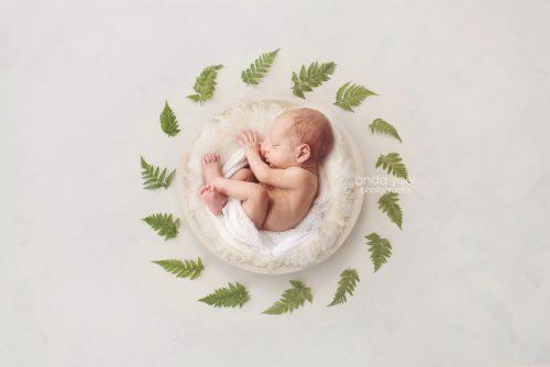 צילום ניובורן בסלסלה לבנה וצמחיה ירוקה (פונה שמאלה) בסטודיו אנדה יואל
