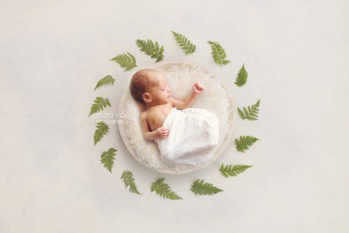 צילום ניובורן בסלסלה לבנה וצמחיה ירוקה (פונה ימינה) בסטודיו אנדה יואל