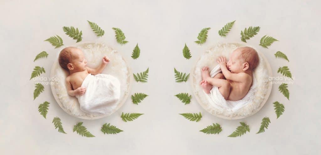 צילומי ניובורן תאומים בסלסלות לבנות וצמחיה ירוקה בסטודיו אנדה יואל