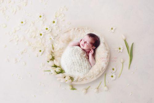 תינוקת ניובורן בסלסלת עץ לבנה ומסביב טוליפים לבנים (תמונה בעיבוד מורכב) צילומי ניובורן אנדה יואל