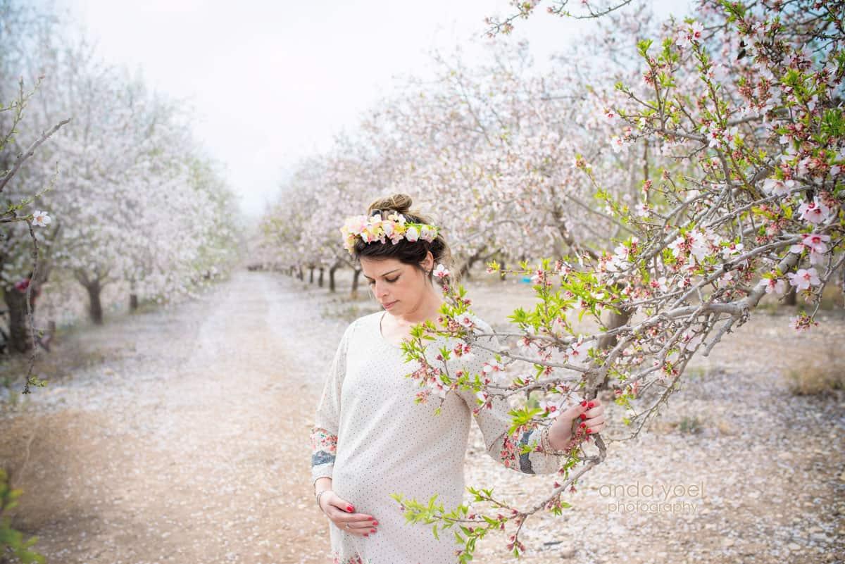 צילומי הריון ומשפחה בטבע במטע שקדיות הריונית מביטה לבטן - אנדה יואל