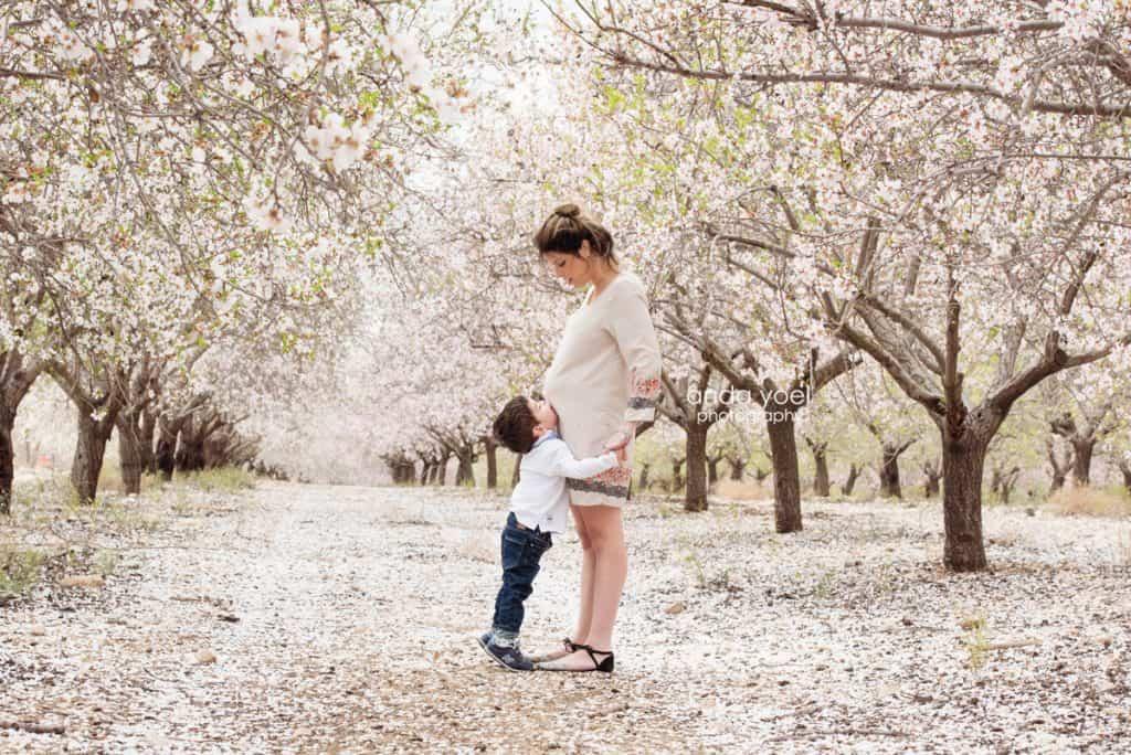 צילומי הריון ומשפחה בטבע במטע שקדיות ילד נותן נשיקה לבטן של האמא - אנדה יואל