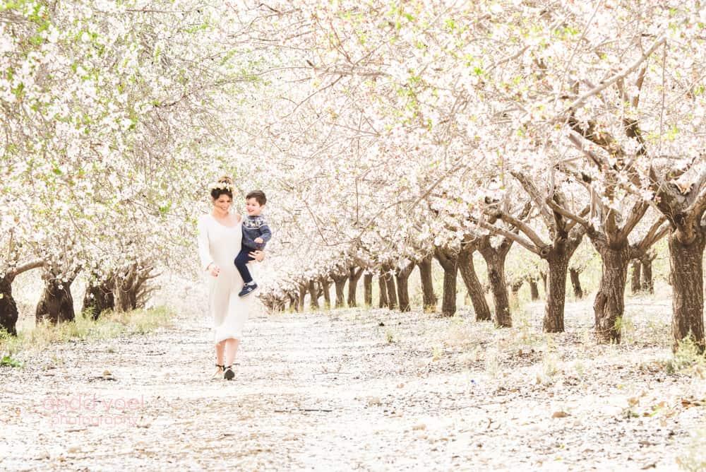 צילומי הריון בטבע במטע שקדיות אמא מחבקת את בנה - אנדה יואל