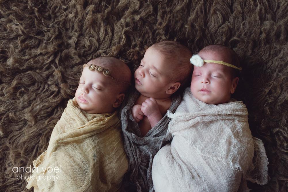 שלישיית ניו בורן 2 בנות ובן בני 20 יום - אנדה יואל צילומי ניו בורן