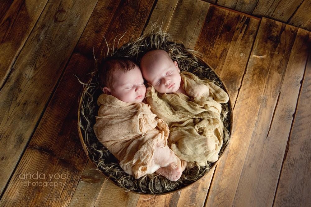 צילומי ניו בורן תאומים מלי וקלייר - אנדה יואל