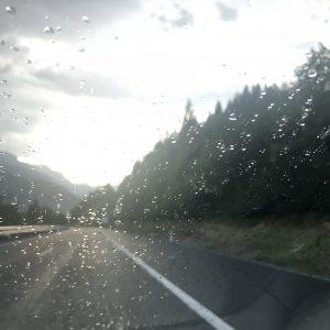מזג אויר כלבבי