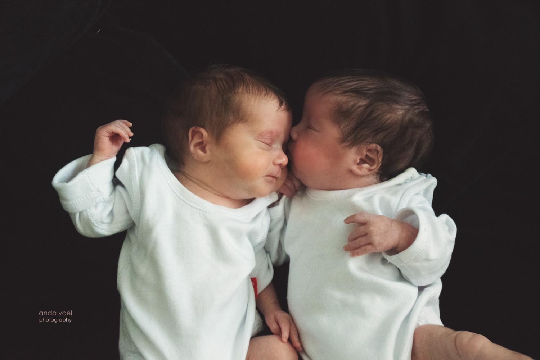 צילומי ניובורן תאומים בבית - אנדה יואל