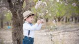 צילומי ילדים בטבע במטע שקדיות ילד מביט בשקדיה - אנדה יואל